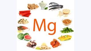 Magnez a metabolizm